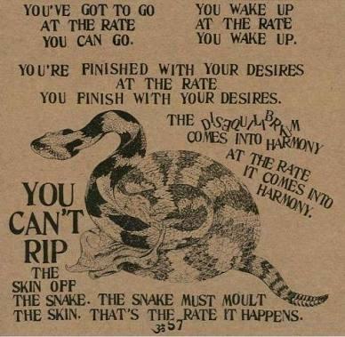 snake ram dass
